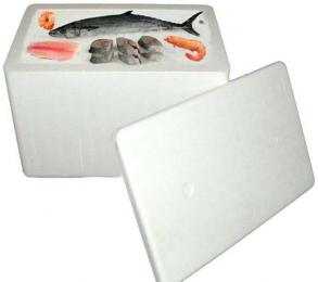 Discover Hunting Hobby Thermacol Box For Fishing (6ltr) sporting product Online in Mumbai - Sportobuddy.com